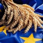 Украинскую экономику необходимо адаптировать к ситуации в Таможенном союзе и Европейском союзе