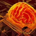 В будущем можно будет «подключаться» к человеческому мозгу