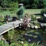 Ландшафтный дизайн искусственного водоема