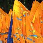 Новая политическая сила в Украине