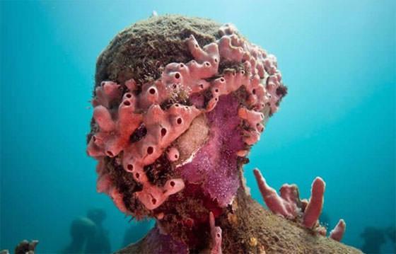 скульптура в коралах под водой