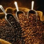 Прекрасный вкус кофе за умеренную цену