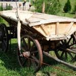 Проблемы развития малого агробизнеса и как их преодолеть
