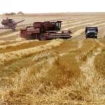 Более четырех миллионов гривен помощи получат аграрии Ровно