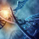 Как получить гражданство Израиля на основе теста ДНК