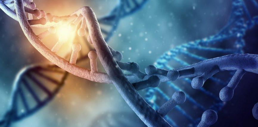 «еврейский ген»