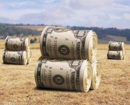 Как выйти из Кризиса. Стоги сена из долларов.